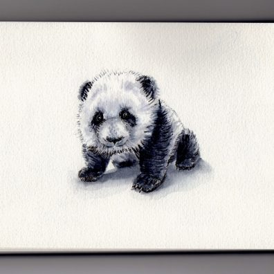Tiny Little Baby Panda Doodlewash