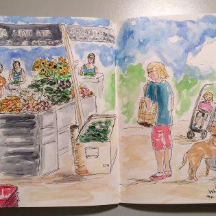 Mueller Farmers Market - Doodlewash by Jane Cobb