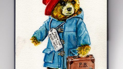 Paddington Bear Doodlewash