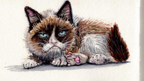 Grumpy Cat Doodlewash
