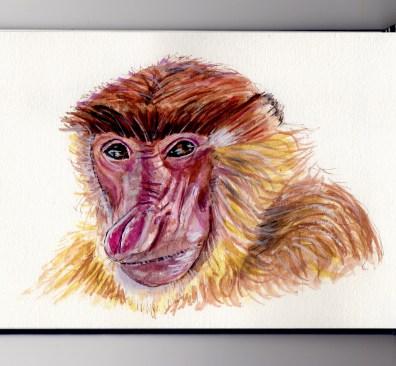 Proboscis Monkey Doodlewash