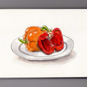 Vitamin C Day - Doodlewash of red and orange bell pepper watercolor painting sketch and illustration