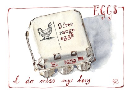 By Hannah Ridout - Doodlewash and watercolor of carton of free range hen eggs