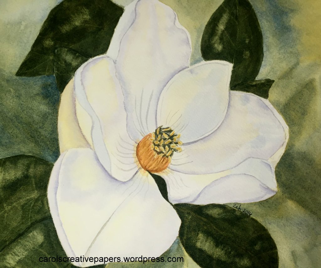 Doodlewash by Carol Hartmann - watercolor painting of magnolia blossom