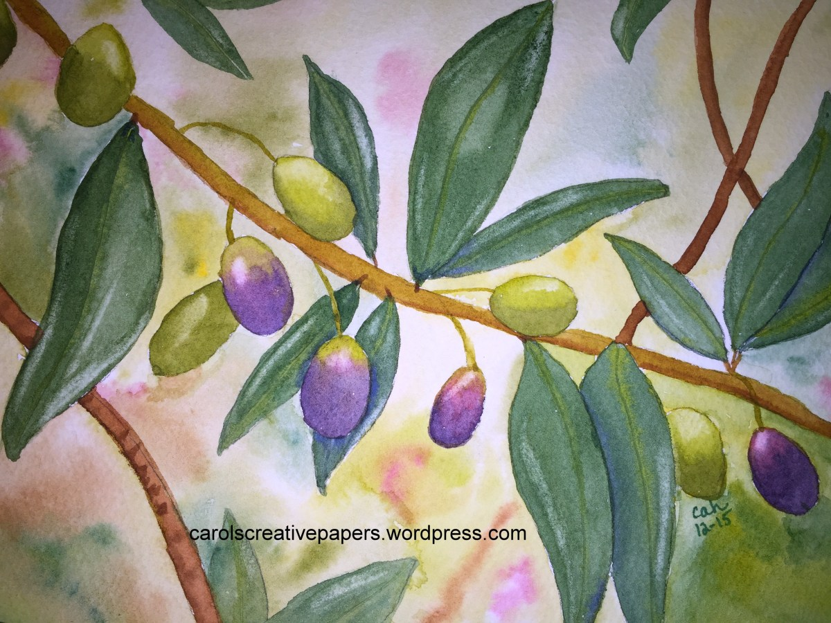 Doodlewash by Carol Hartmann - Olive Branch in Corfu, Greece
