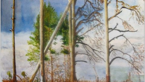 Doodlewash by Schokohund - Mijello watercolor of landscape, Austria