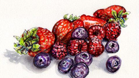 Doodlewash of Berries on the Brain strawberries blueberries and raspberries loose