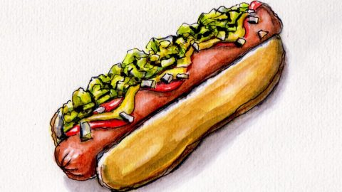 American Hot Dog with mustard ketchup and relish on bun Doodlewash and watercolor urban sketch