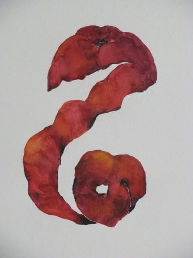 Birgit Winter - Doodlewash of blood orange peel