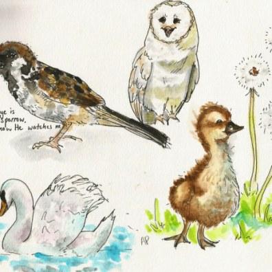 Annie Parsons Doodlewash
