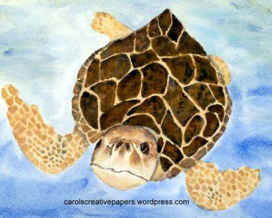 Carol Hartmann Doodlewash