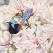 Doodlewash - watercolor painting illustration by Heidi Willis of small bird