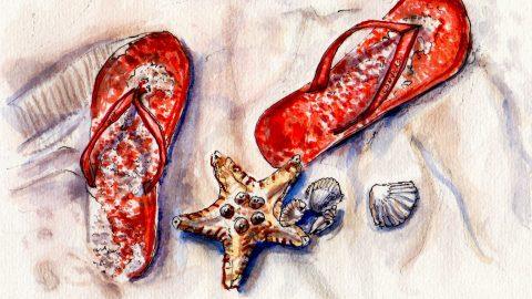 Day 12 My Favorite Beach Flip Flops on White Sand Starfish Seashells