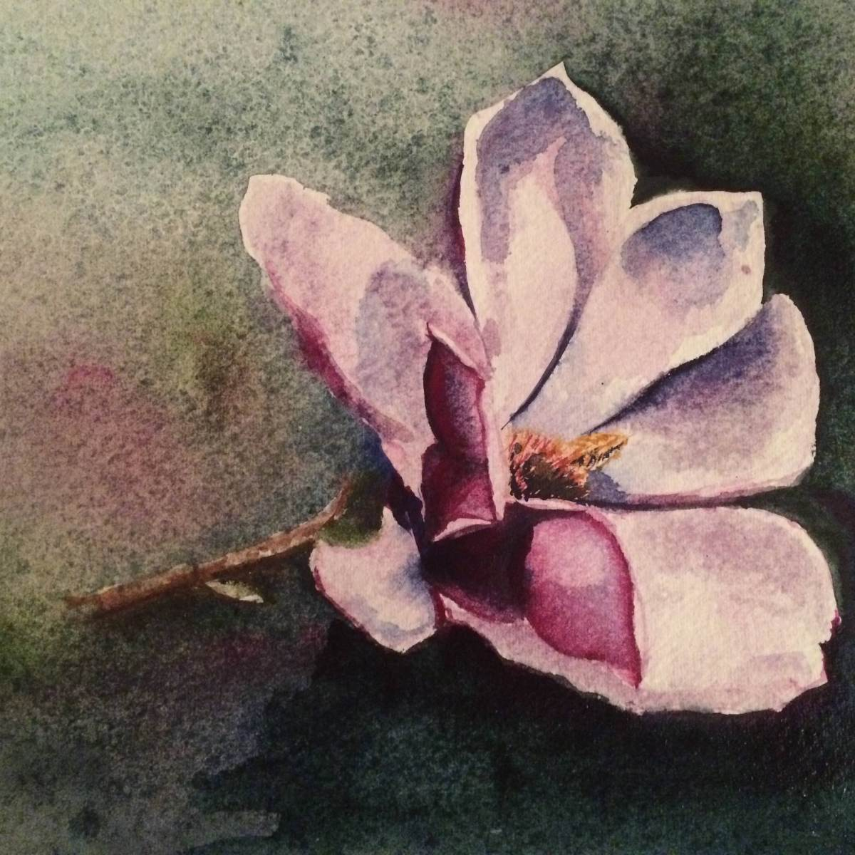 #Doodlewash - Watercolor sketch by Leslie Chua - magnolia - #WorldWatercolorGroup