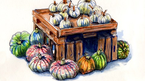 Day 26 - #WorldWatercolorGroup National Pumpkin Day Various pumpkins squash