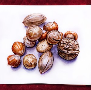 Day 23 - #WorldWatercolorGroup Mixed Nuts watercolor holiday nut mix