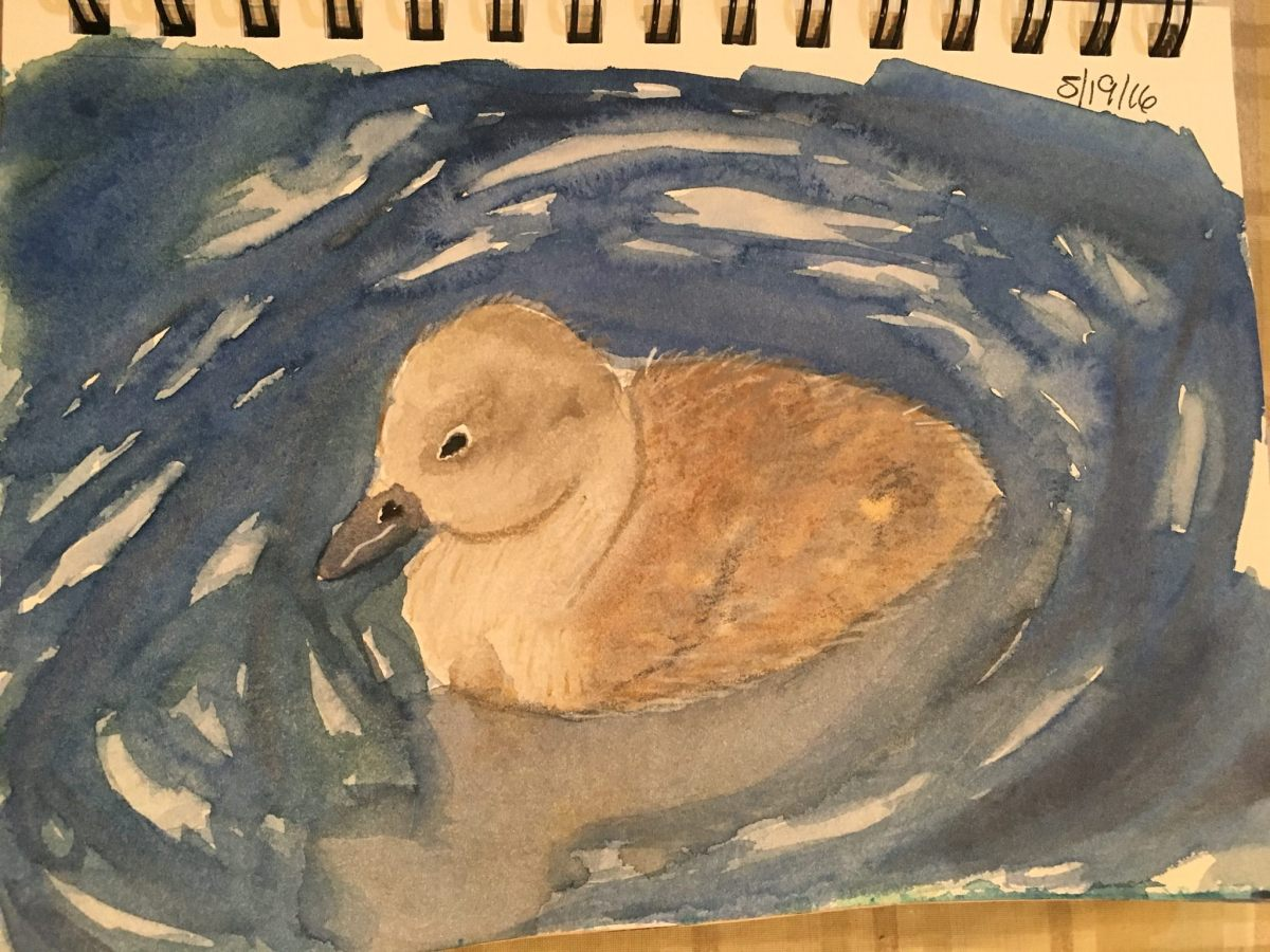 #WorldWatercolorGroup - Watercolor painting of duck by Jackie