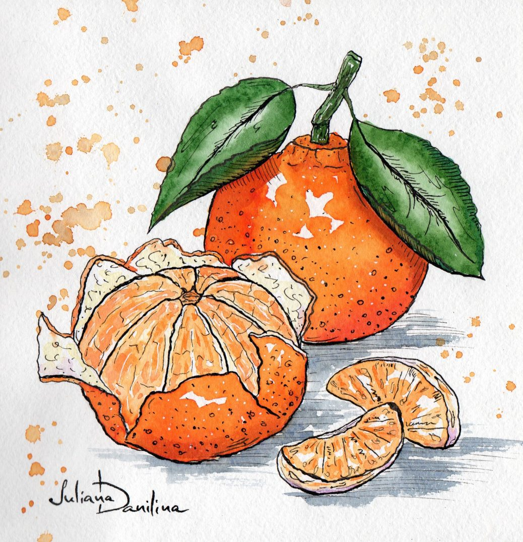 #WorldWatercolorGroup - Watercolor painting by Juliana Danilina in Odessa, Ukraine of oranges - #doodlewash