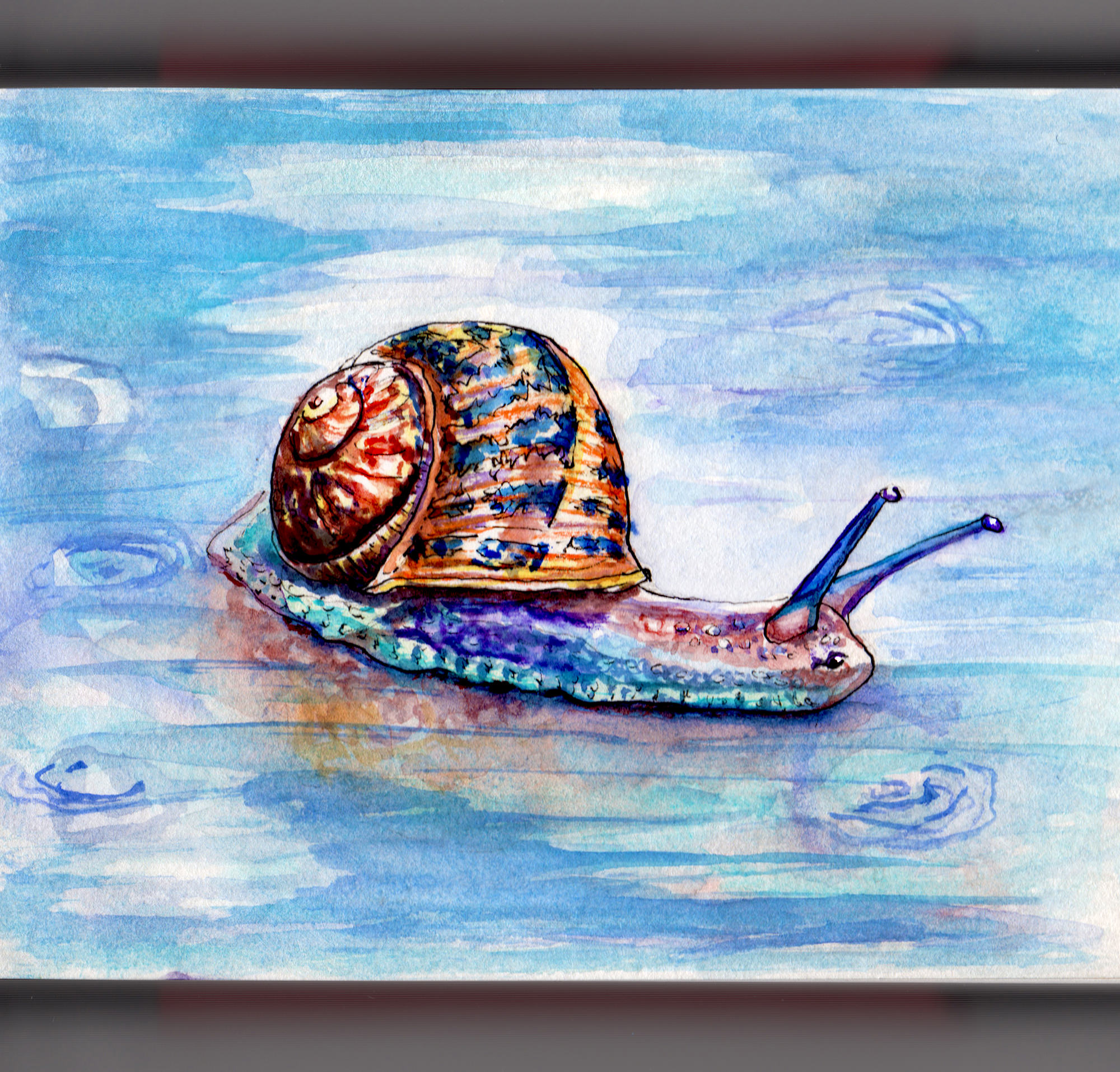 Day 12 - #WorldWatercolorGroup - A Snail In A Puddle of Water watercolor - #doodlewash