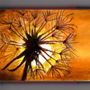 Day 28 - #WorldWatercolorGroup When The Sun Says Farewell Dandelion at Sunset - #doodlewash