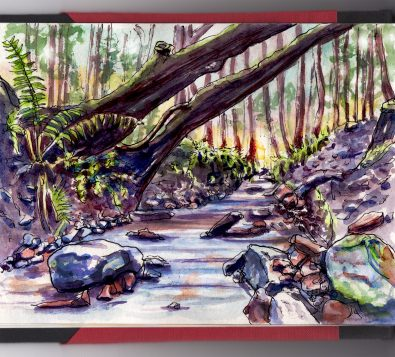 Day 5 - #WorldWatercolorGroup Forest with Brook Trees water - #doodlewash