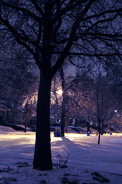 Wintry Night