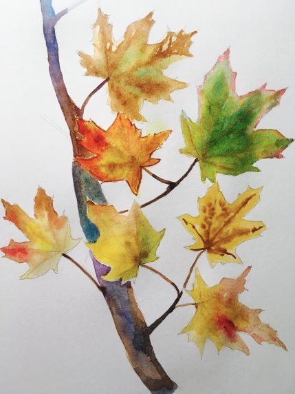 #WorldWatercolorGroup - Watercolor painting of fall leaves by Rocelee F. Benedicto-Sheldon - #doodlewash
