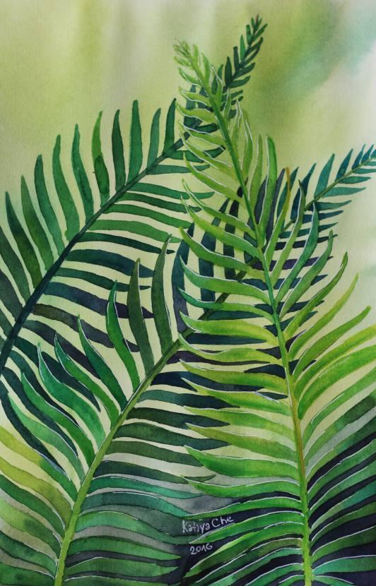 #WorldWatercolorGroup - Watercolor by Katiya Che of fern - #doodlewash