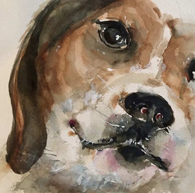 #WorldWatercolorGroup - Watercolor Painting by Lisa Argentieri - Dog, pet portrait - #doodlewash