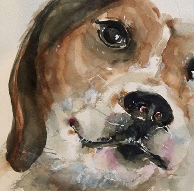 #WorldWatercolorGroup - Watercolor Painting by Lisa Argentieri - Dog, pet portrait - #doodlewash