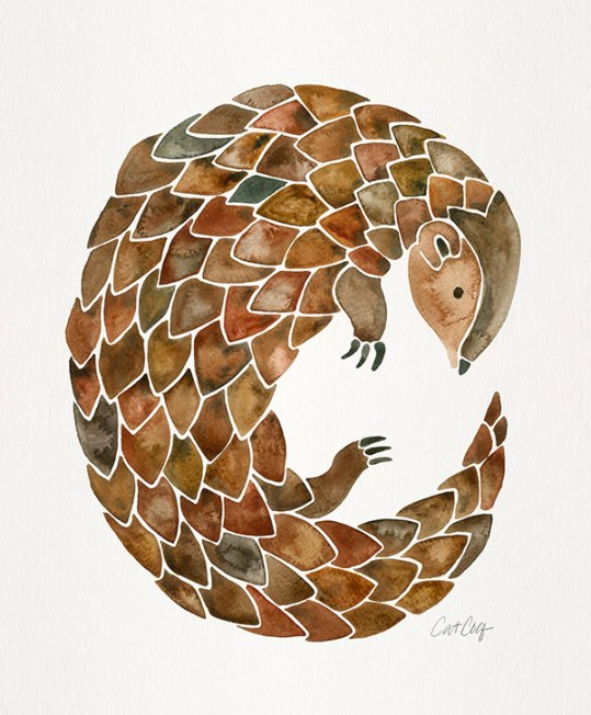 #WorldWatercolorGroup - Watercolor Art by Cat Coquillette - Pangolin Art Print - #doodlewash