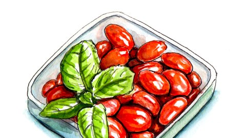 Day 26 - #WorldWatercolorGroup - Basil with Bowl of Tomatoes - #doodlewash