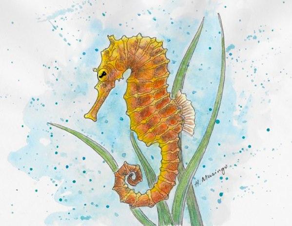 #WorldWatercolorGroup - Watercolor by Heather Musingo of seahorse - #doodlewash