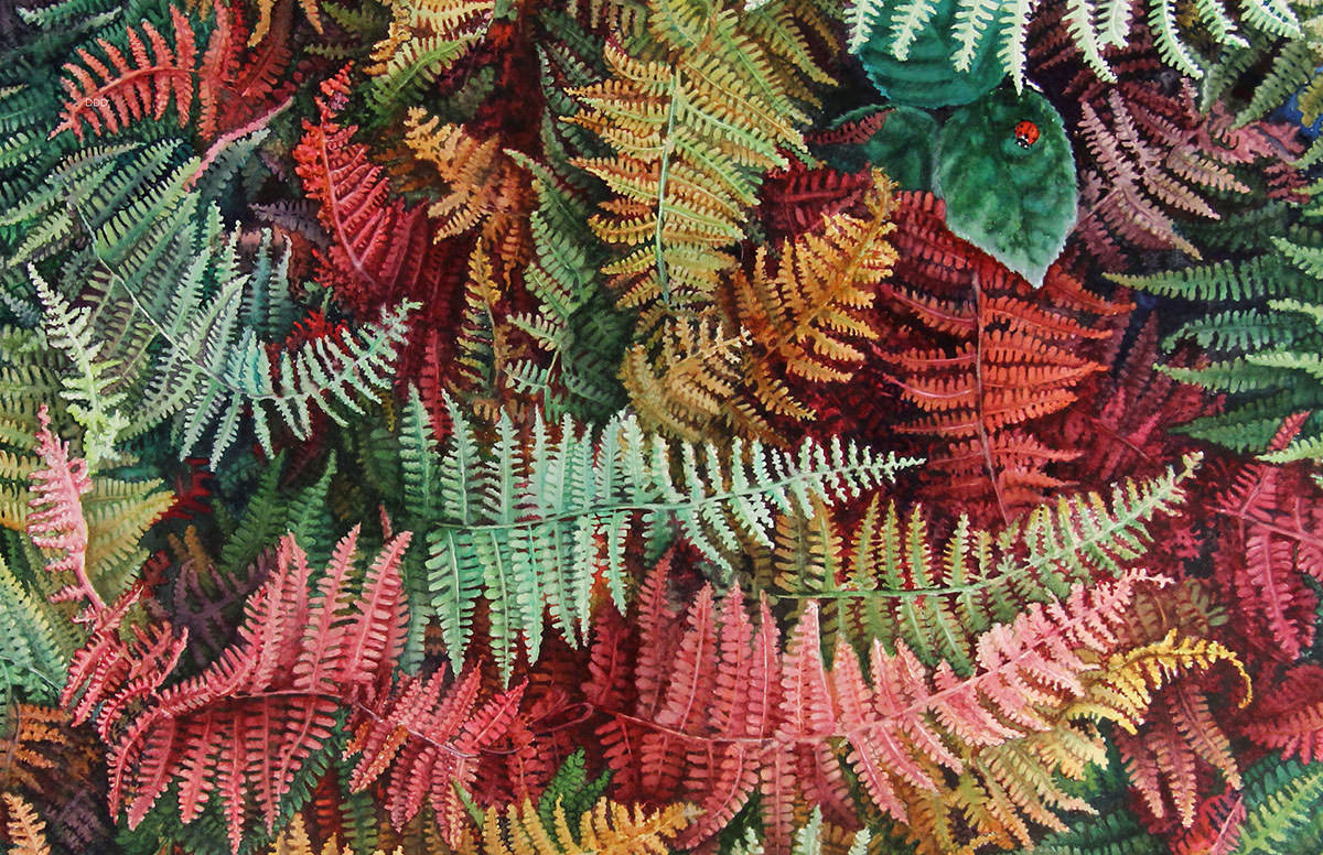 #WorldWatercolorGroup - Watercolor painting by Deb Watson - colorful ferns - #doodlewash