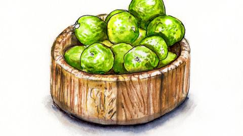 Day 16 - #WorldWatercolorGroup - Wooden Bowl Full Of Limes - #doodlewash