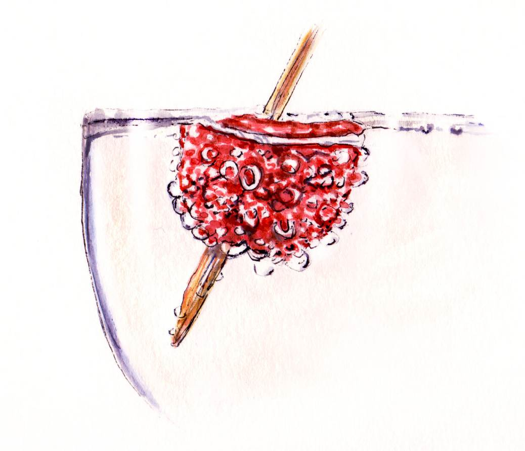 Day 23 - Bubbly Raspberry In Champagne - #doodlewash
