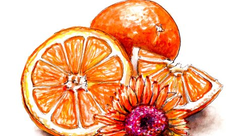 Day 2 - #WorldWatercolorGroup - Flower With Oranges Watercolor - #doodlewash