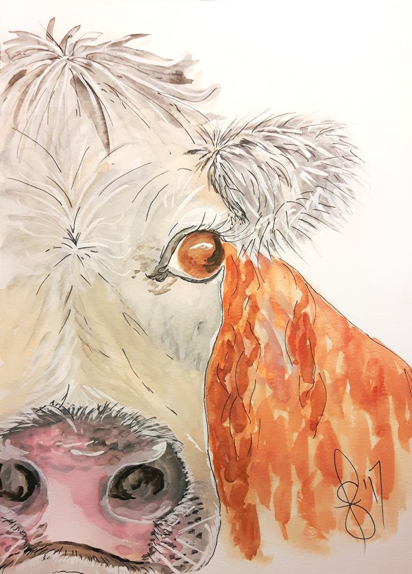 #WorldWatercolorGroup - Watercolor by Susan Feniak - Bessy - cow - #doodlewash