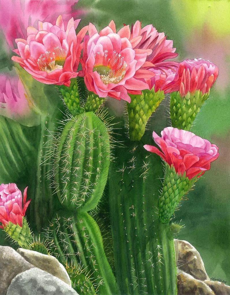 #WorldWatercolorGroup - Watercolor by Krzysztof Kowalski - Spiky Beauty - #doodlewash