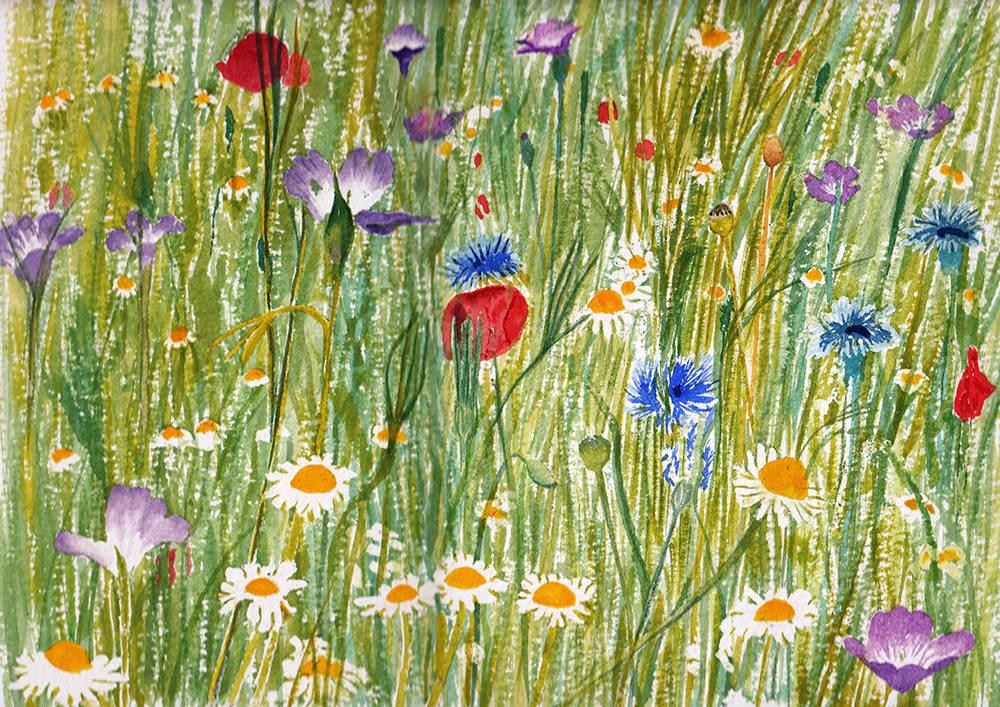 #WorldWatercolorGroup - Watercolor by Jan Purves - Wildflower meadow - #doodlewash