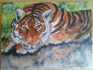 A tiger I painted for my dad for father's day. He loved it. 20170618_093503