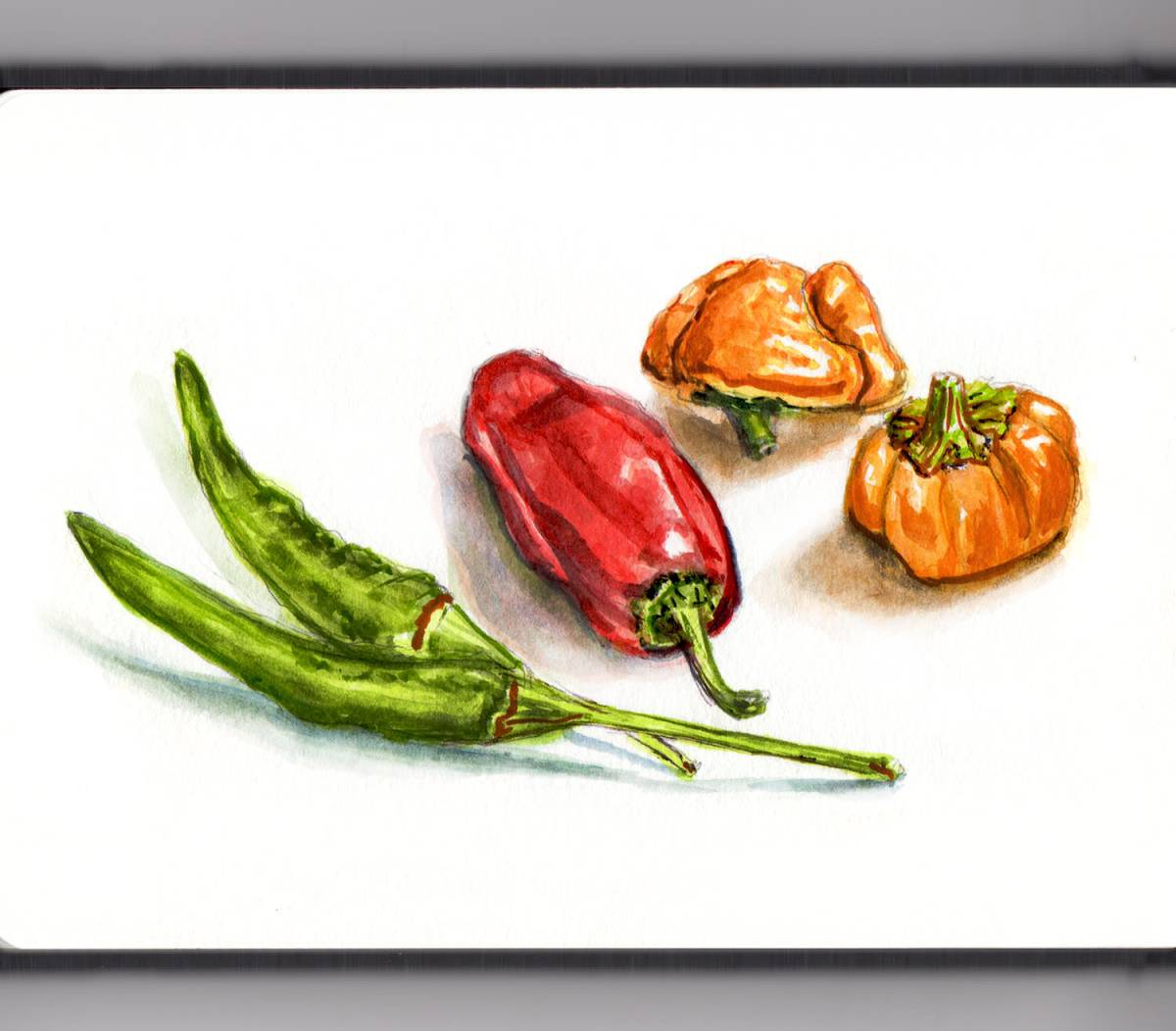 Day 13 - #WorldWatercolorGroup - Hot Pepper Mix Peppers in Watercolor Food Illustration - #doodlewash