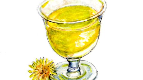 Day 15 - #WorldWatercolorGroup - Dandelion Wine Watercolor - #doodlewash
