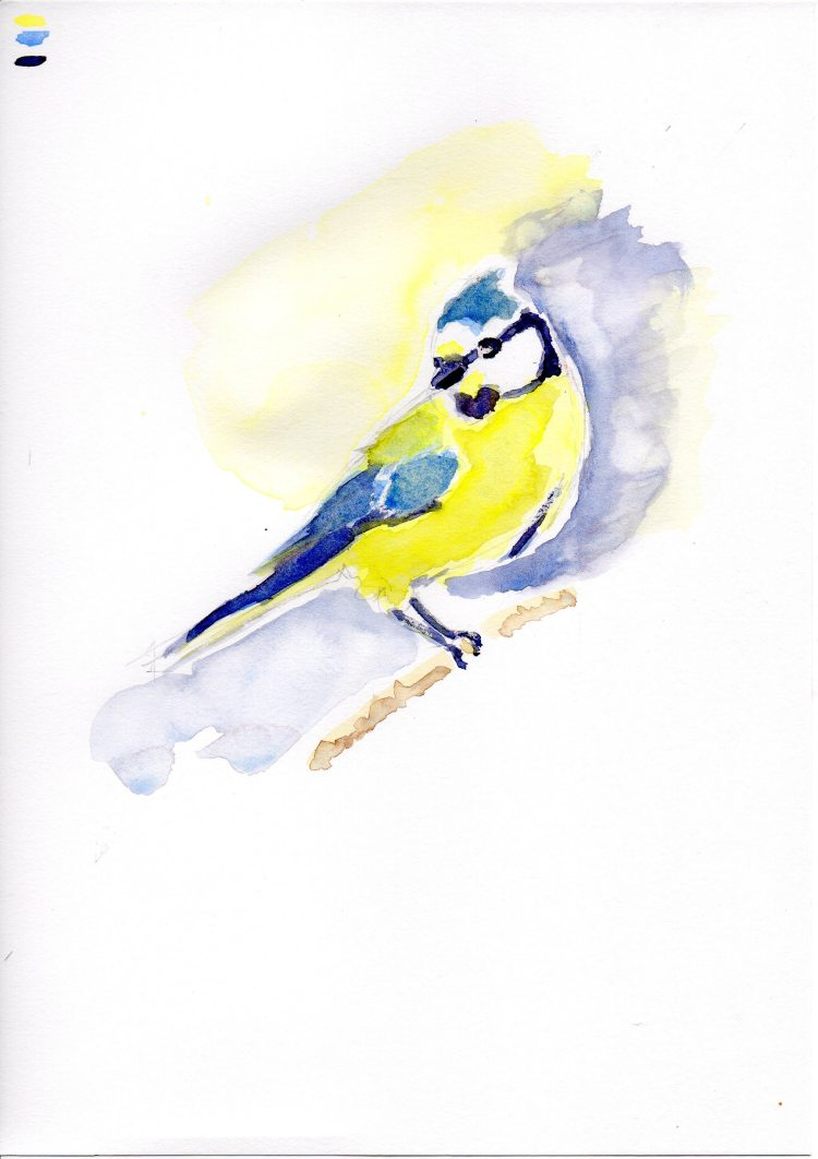 Little blue tit from photo on Pixabay. Trying loose and splashy with blooms! IMG_1485