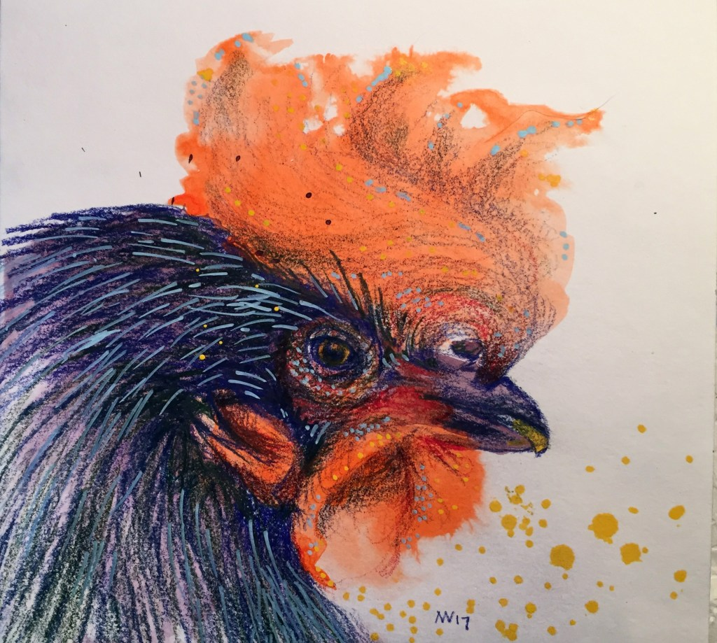 Rooster: watercolor, colored pencil and alcohol marker on paper. IMG_5843