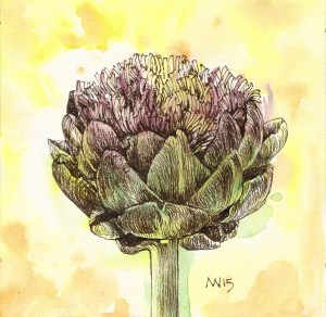 Artichoke: Watercolor and Ink SCAN0060