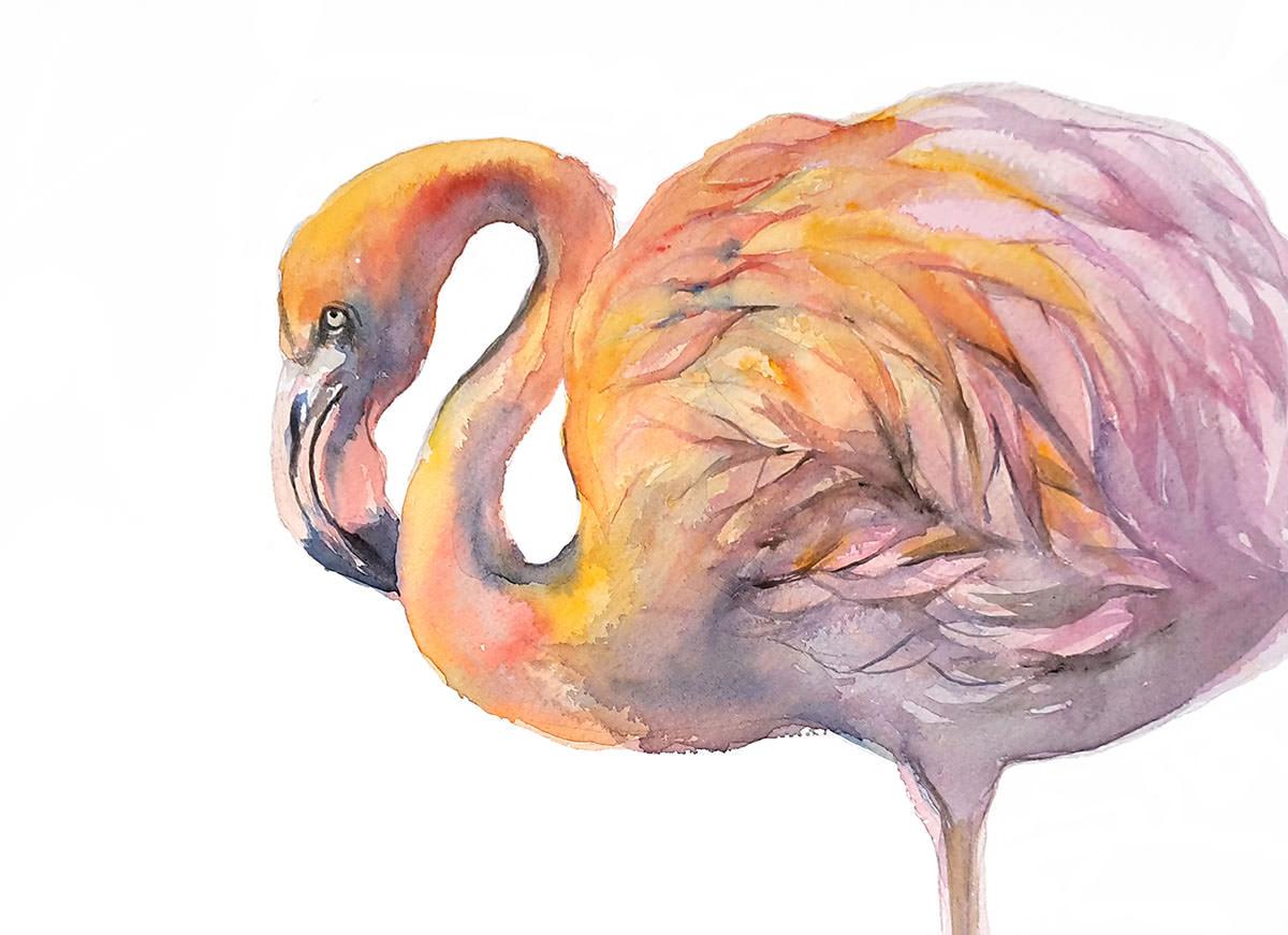 #WorldWatercolorGroup - Watercolor by Violeta Boyadzhieva - flamingo - #doodlewash