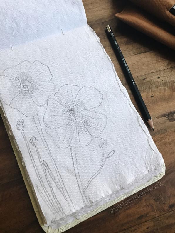 #WorldWatercolorGroup - Drawing by Catharine Mi-Sook - #doodlewash