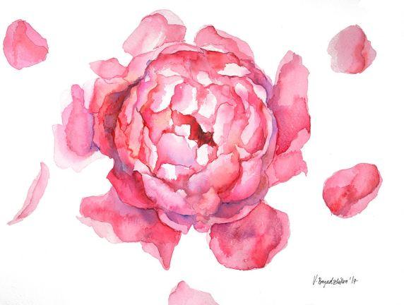 #WorldWatercolorGroup - Watercolor by Violeta Boyadzhieva - peony flower - #doodlewash