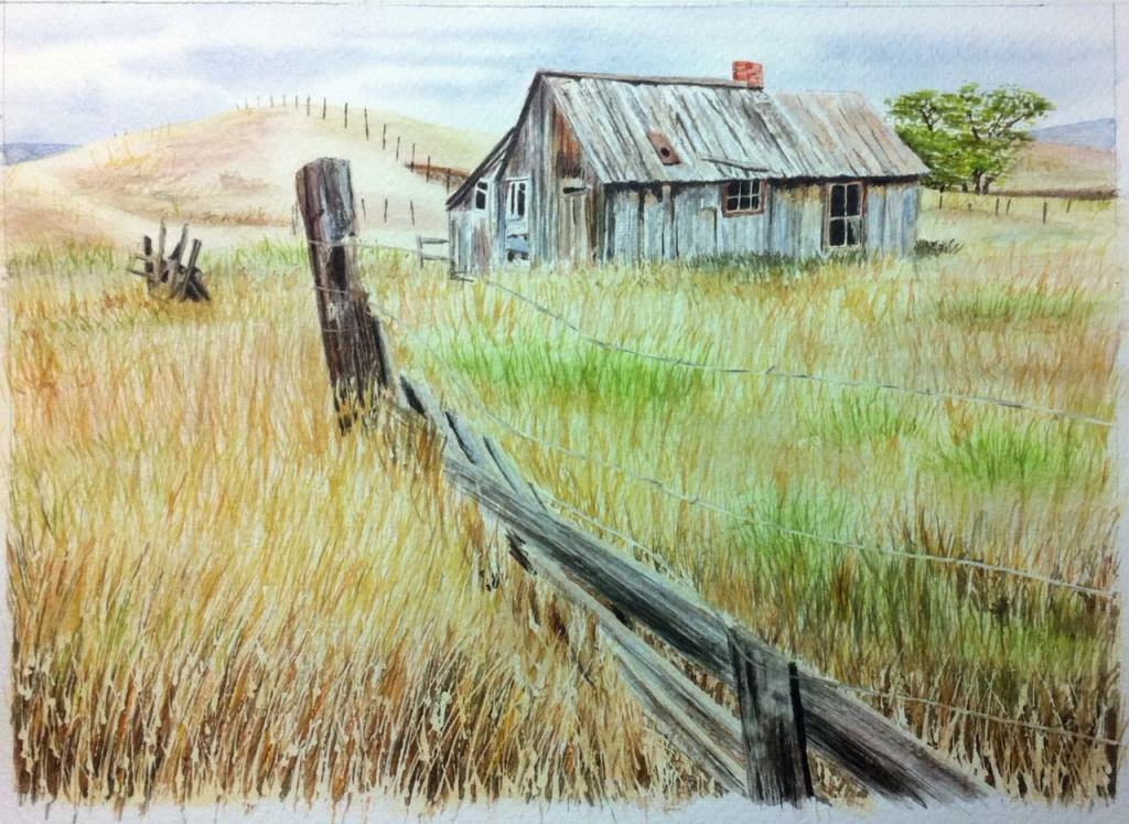 From a photo by Joan McDaniel. Watercolour on paper. photo 1 – Edited